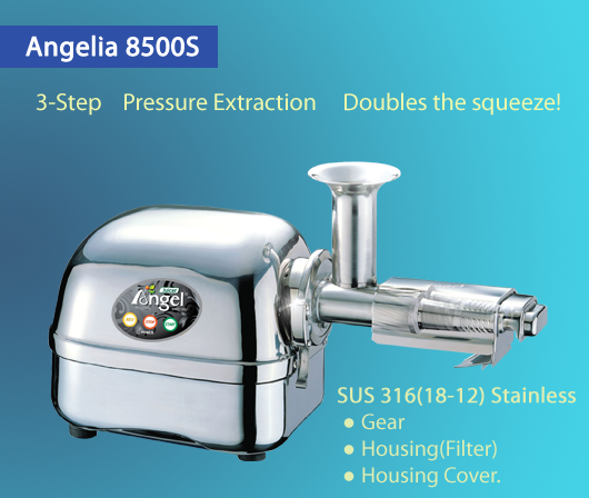 angel slow juicer